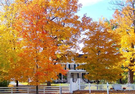 fall house fall into place perks of buying or selling a home in the fall