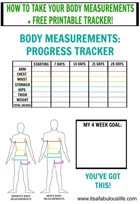 100 weight loss charts templates weight loss log frosted