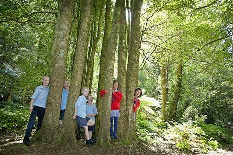 The Blue Mountains Botanic Garden Mount Tomah The Blue Mountains Botanic Garden Mount Tomah Away We Go Tours