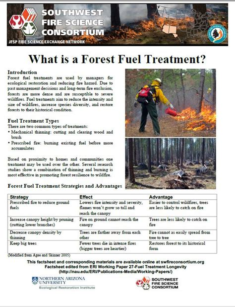 Prevention Of Forest Essay by Home Southwest Science Consortium