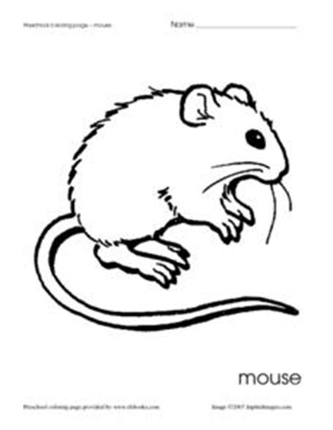 mouse coloring pages preschool preschool coloring page mouse worksheet for pre k