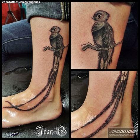 imagenes de tatuajes de quetzal tatuaje ivangonas quetzales aves animales pictures tattoo