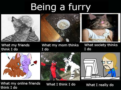 Furry Meme - what others think meme by ghostriderwolf on deviantart
