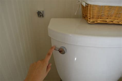 bidet drainage connection brondell cleanspa bidet diy your own bidet without