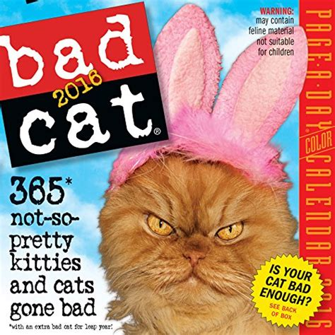 bad cat page a day calendar bad cat color page a day calendar 2016 import it all