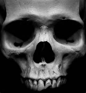skull face san gato photography like us on facebook