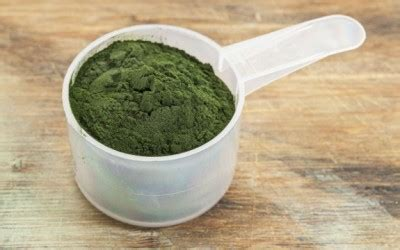 Spirulina Detox Thc by We Should All Be Protecting Our Sea Medicine Spirulina