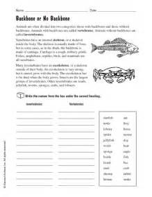 invertebrates worksheet worksheet amp workbook site