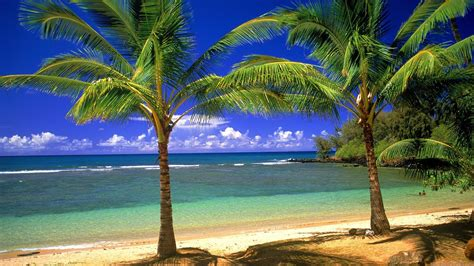 Vacation Home Rentals In Puerto Rico - widescreen hd wallpapers 1920x1200 1920x1080 hd widescreen 1920x1080