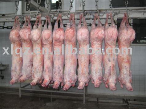 halal frozen lamb  carcass productschina halal