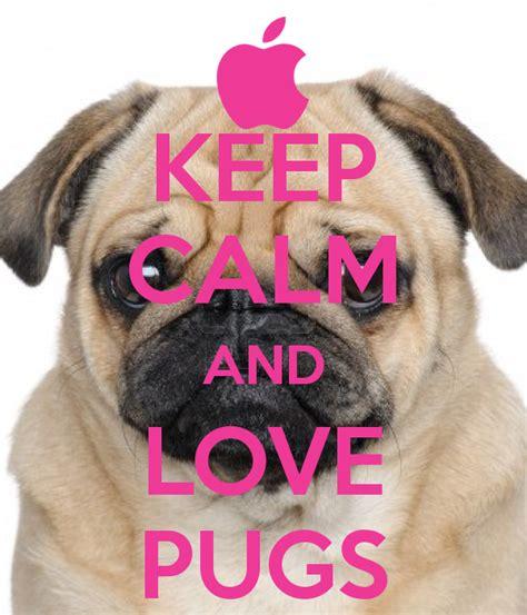 keeping pugs keep calm and pugs poster shan keep calm o matic