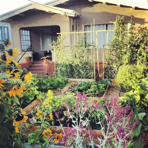 Front Yard Vegetable Garden 38 homes that turned their front lawns into beautiful