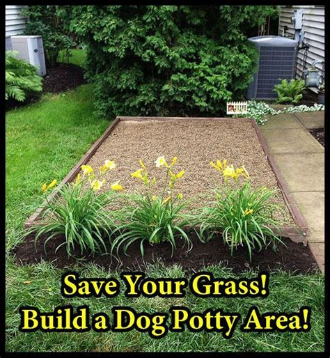 do dogs need grass backyard best 25 dog backyard ideas on pinterest dog run side