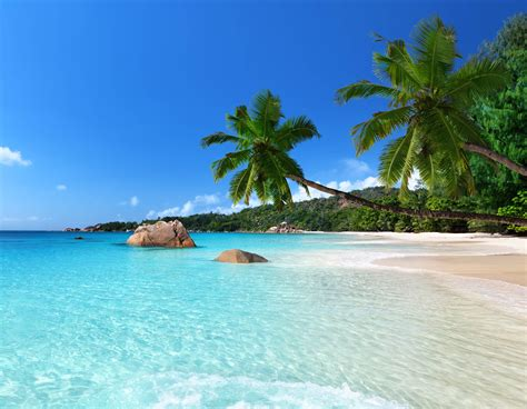 tropical island meeting rooms edinburgh training rooms