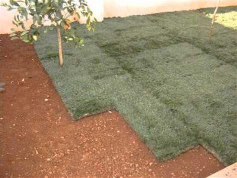 tappeto erboso pronto realizzazzione tappeto erboso con prato pronto a rotoli