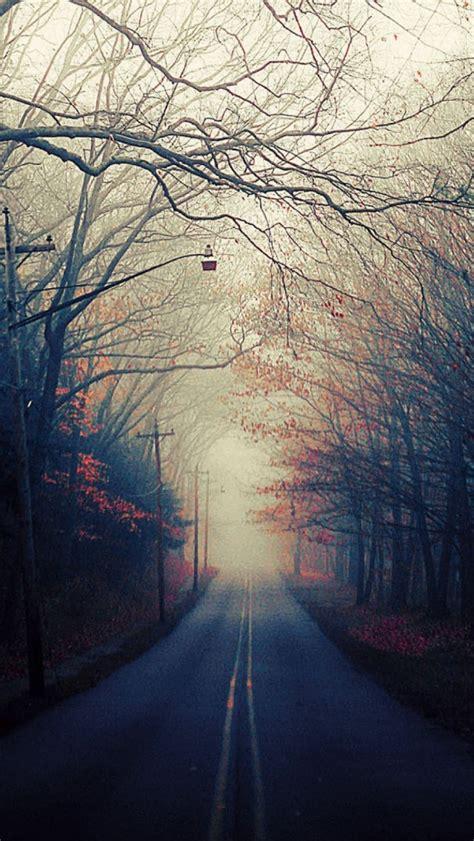 beautiful autumn road iphone  wallpaper hd