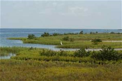 tpwd: gulf coast: state of water