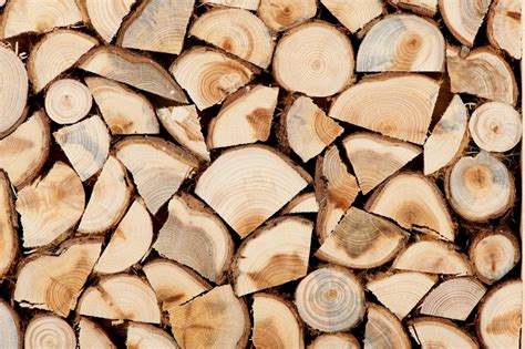 the meaning and symbolism of the word 171 firewood 187