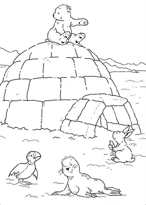 arctic tundra habitat coloring pages coloring pages