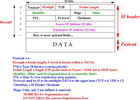 network packet layout cs455 sylabus