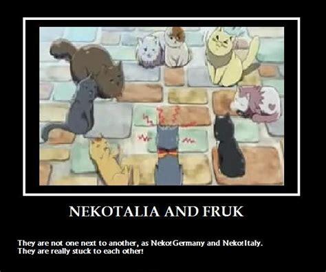 R18 Memes - nekotalia and fruk by naehja on deviantart
