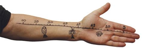 tattoo finger ruler sunlive getting a measure of mid life crisis the bay s