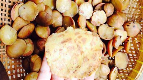 Kerupuk Jengkol Kribo Kribo Keripik Jengkol medan bukan hanya bika ambon ada juga olahan ubi kentang hingga jengkol jadi keripik dan