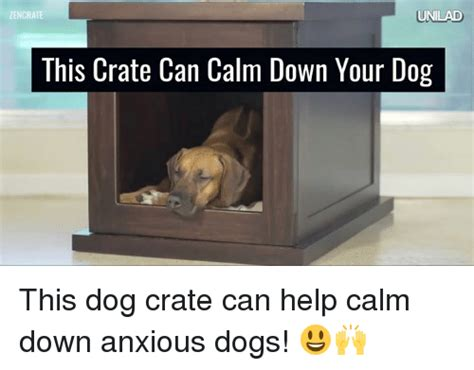 zen crate zencrate unilad this crate can calm your this crate can help calm