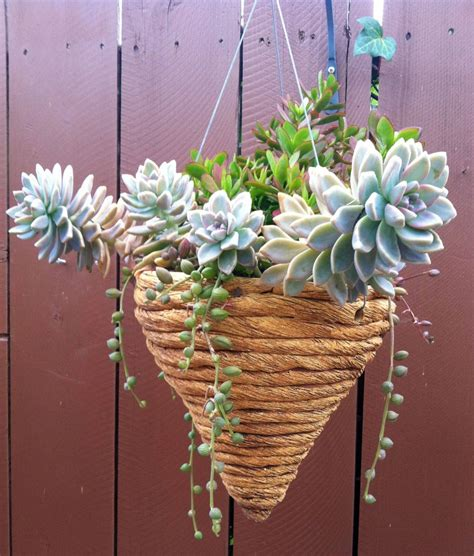 Rope Hanging Planter - rope coiled cone hanging planter susan s ceramics