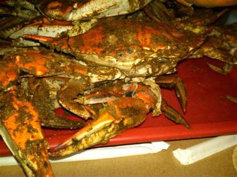 fairfax crab house all you can eat md blue crabs photo de captain pell s fairfax crab house fairfax