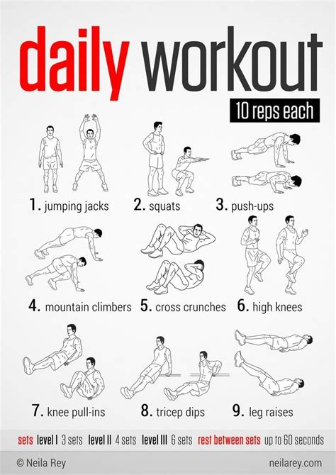 best 25 easy daily workouts ideas on workout