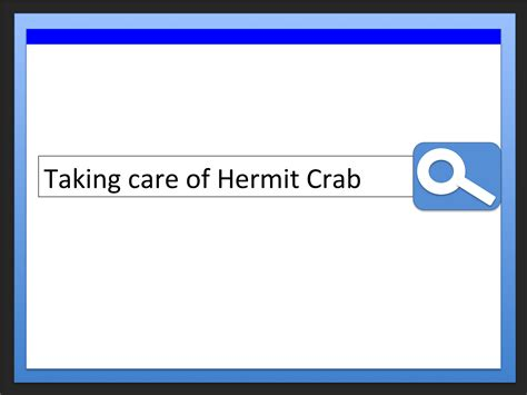 do hermit crabs need a heat l how to create a hermit crab habitat 9 steps with pictures