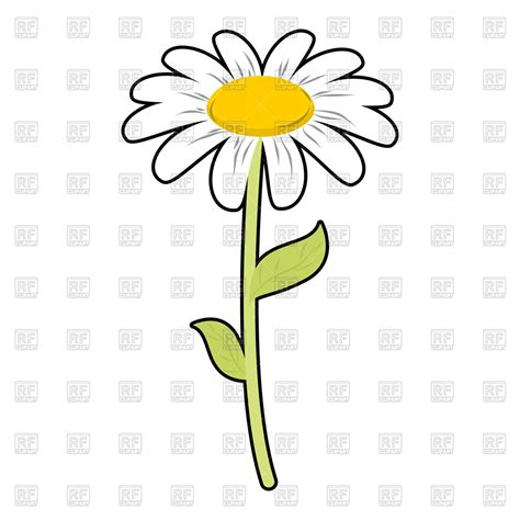 eps clipart chamomile field flower royalty free vector clip