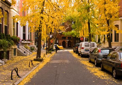 rittenhouse square's rent is 14th highest in the country