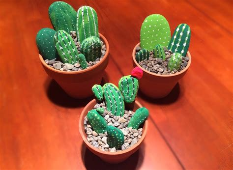 Cactus Rock Garden Cactus Rock Garden Rock Cactus Garden Cacti Air Plants Rock Cactus Garden Flickr Photo Likes