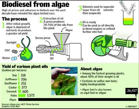 biofuel adalah teknologi terapan mikroalga energi terbarukan generasi