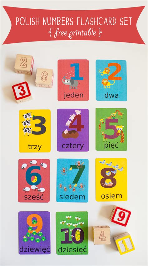 cute printable number cards polish numbers flashcard printable gus on the go