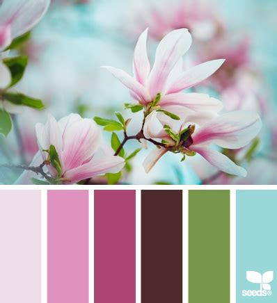 magnolia color home page magnolia design seeds and color inspiration