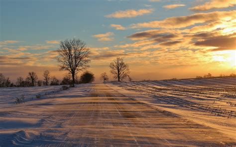 winter road field trees sunset wallpapers winter road