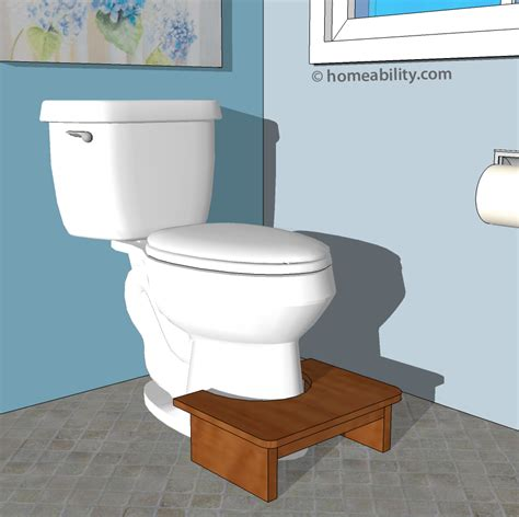Toilet Stool by Accessible Toilets Toilet Equipment The Basics