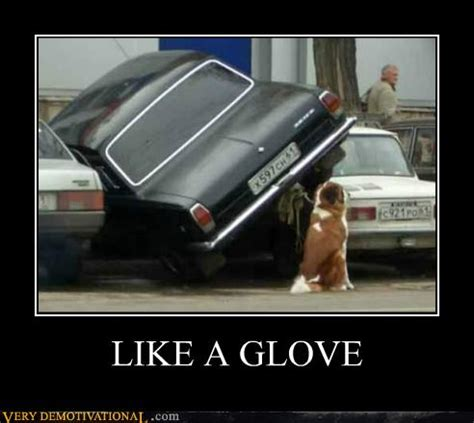 Like A Glove Meme - like a glove very demotivational demotivational