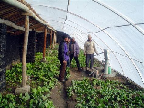 building  durable walipini greenhouse  prepared page