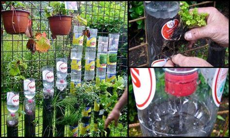 Build A Vertical Garden From Recycled Soda Bottles Diy Soda Bottle Garden Wall