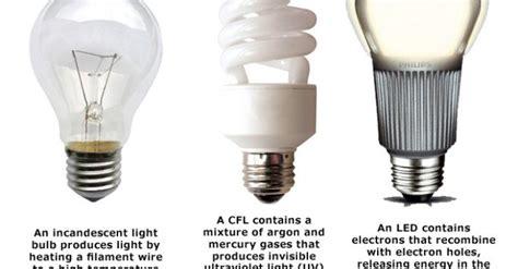 different types of light bulbs 171 inhabitat green design