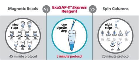ready to go pcr exosap it express pcr product cleanup reagent thermo