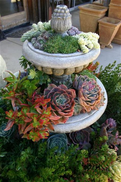 Succulent Garden Ideas 70 Indoor And Outdoor Succulent Garden Ideas Shelterness