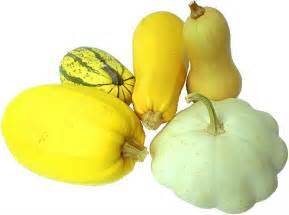 squashes fruits and vegetables