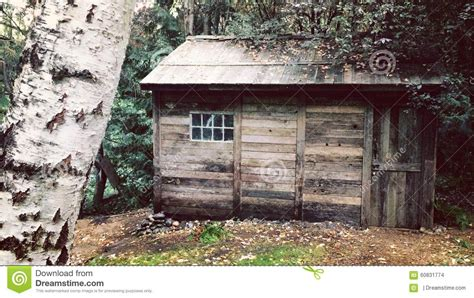 cabin in the woods stock photo image 60831774