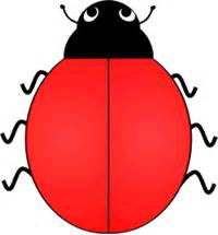 ladybug coloring page no spots ladybug with no spots clipart