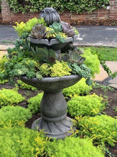 Succulent Garden Diy by Johnston Gardens Diy Succulent Garden